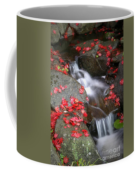 Autumn Stream Serene Tranquil Leaves Red Coffee Mug featuring the photograph Serenity by Winston Rockwell
