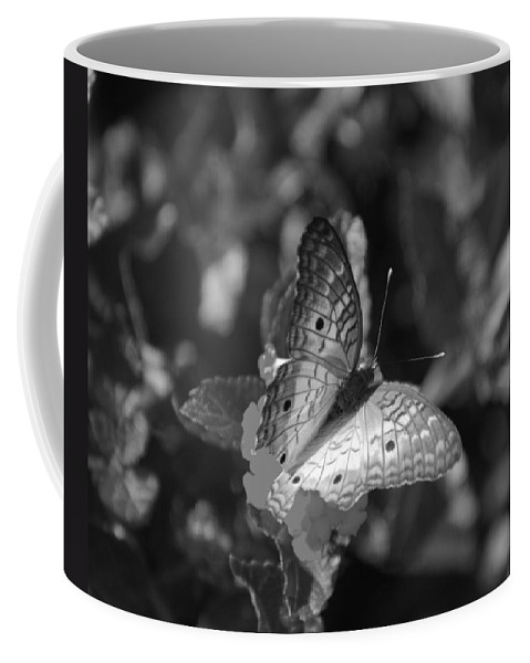 Black And White Coffee Mug featuring the photograph Shades Of Flight by Rob Hans