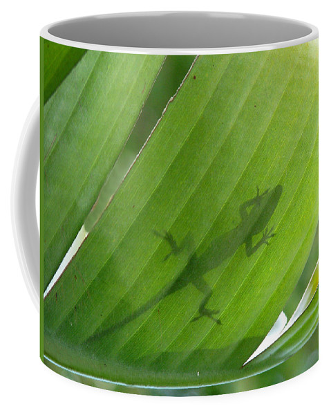 Nature Coffee Mug featuring the photograph Shadow Lizard by Peg Urban