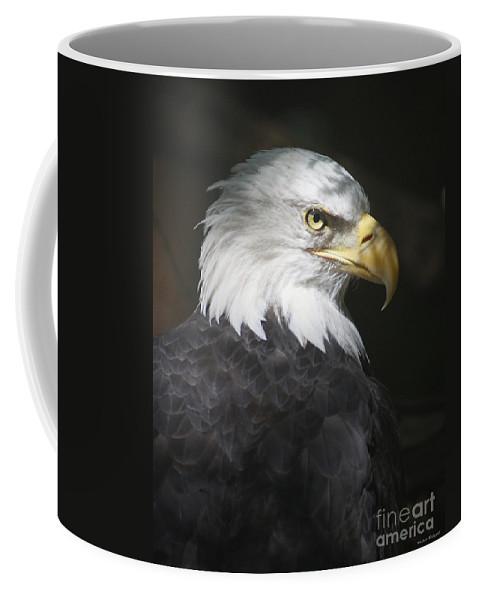 Eagle Bird Shadow Portrait Hawk Coffee Mug featuring the photograph Shadow Raptor by Winston Rockwell