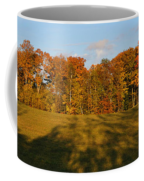Fall Coffee Mug featuring the photograph Shadows Bow by Tim Nyberg