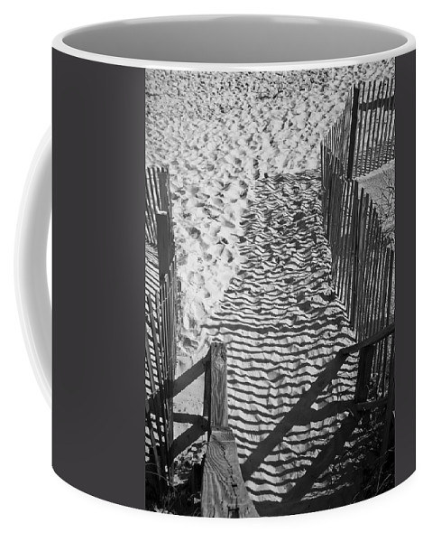 Shadow Coffee Mug featuring the photograph Shadows In The Sand by Teresa Mucha