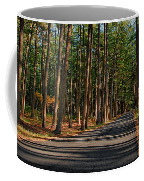 New Jersey Coffee Mug featuring the photograph Shadows Road - Ocean County Park by Angie Tirado