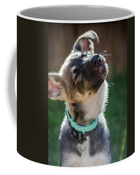 Balto Coffee Mug featuring the photograph Shakey Shake by Sandra Parlow