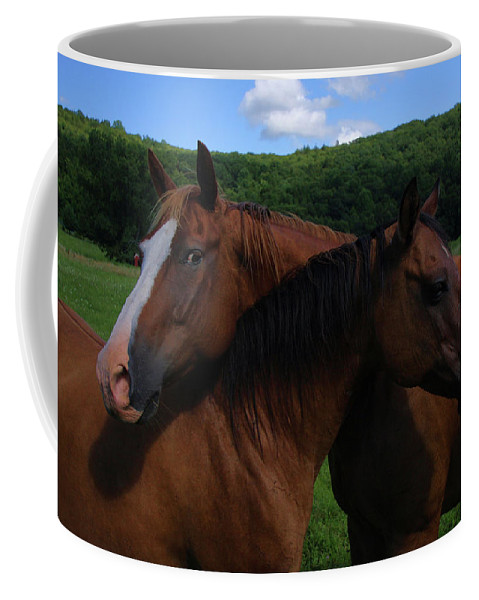 Horses Coffee Mug featuring the photograph She Is Mine by Karol Livote
