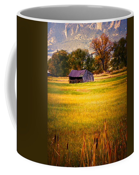 Shed Coffee Mug featuring the photograph Shed In Sunlight by Marilyn Hunt