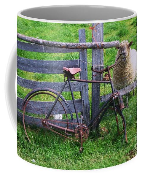 Photograph Sheep Bicycle Fence Grass Coffee Mug featuring the photograph Sheep And Bicycle by Seon-Jeong Kim