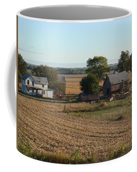 Sheep Coffee Mug featuring the photograph Sheep Farm by Bonfire Photography