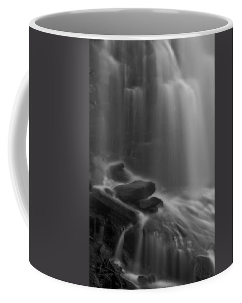Flow Coffee Mug featuring the photograph Sheer Bliss by Evelina Kremsdorf