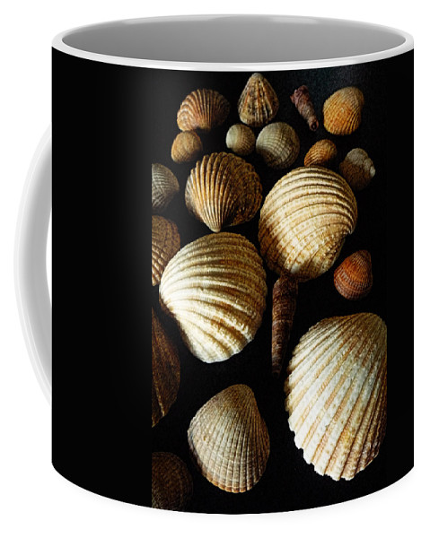 Shell Coffee Mug featuring the mixed media Shell Art - D by P Donovan