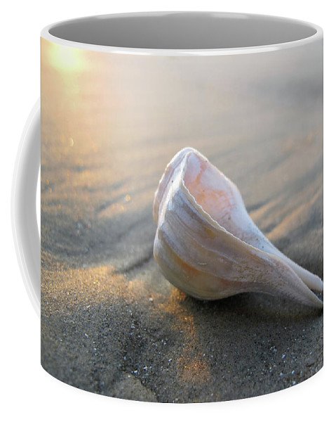 Seashell Coffee Mug featuring the photograph Shell On The Beach by Paul Westcott