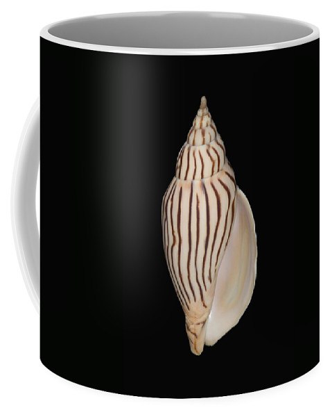 76-pfs0002 Coffee Mug featuring the photograph Shell Pattern - Bw by Bill Brennan - Printscapes