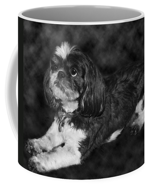 3scape Coffee Mug featuring the painting Shih Tzu by Adam Romanowicz