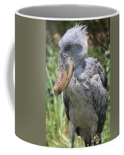 Bird Coffee Mug featuring the photograph Shoebill Stork by Carol Groenen