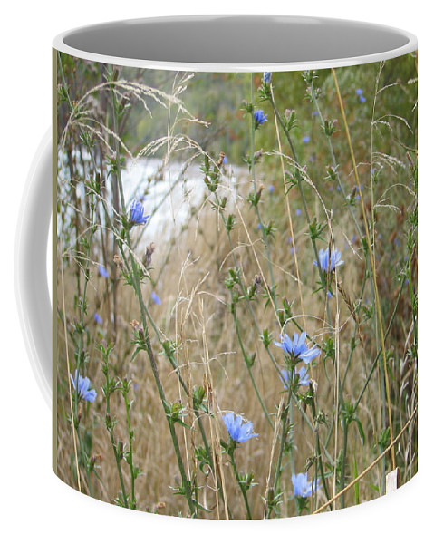 Flower Coffee Mug featuring the photograph Shore Flowers by Kelly Mezzapelle