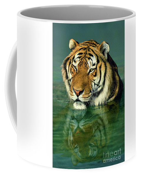 Siberian Tiger Coffee Mug featuring the photograph Siberian Tiger Reflection Wildlife Rescue by Dave Welling