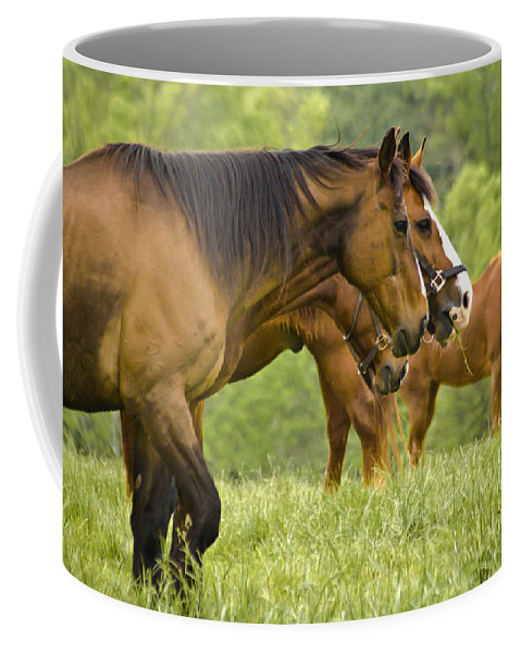 Horse Coffee Mug featuring the photograph Side By Side by Trish Tritz