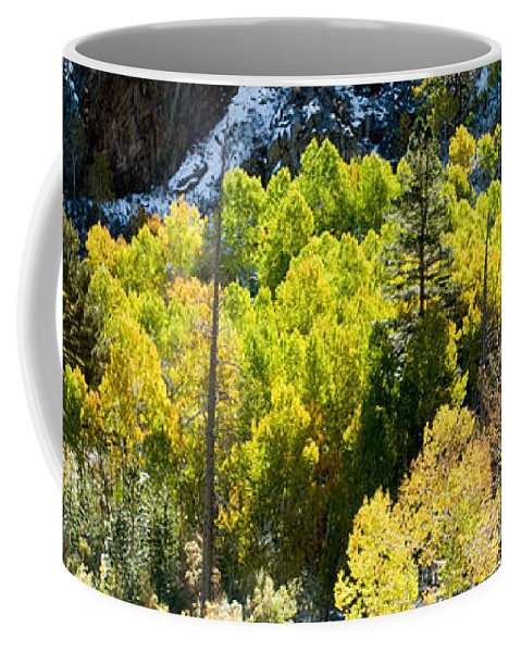California Coffee Mug featuring the photograph Sierra Fall Forest by Norman Andrus