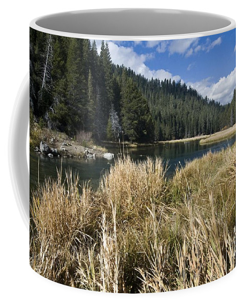 California Coffee Mug featuring the photograph Sierra Serenity by Norman Andrus