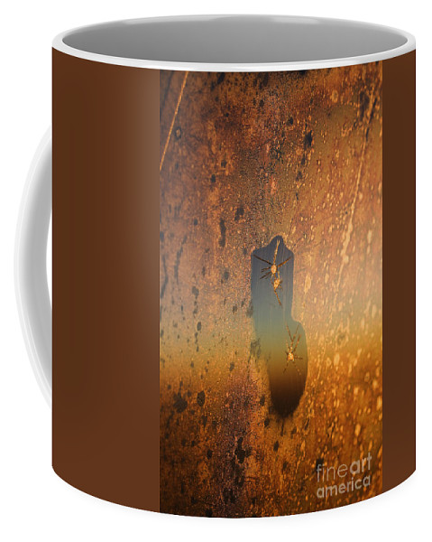 Sun Coffee Mug featuring the photograph Signs-7 by Casper Cammeraat