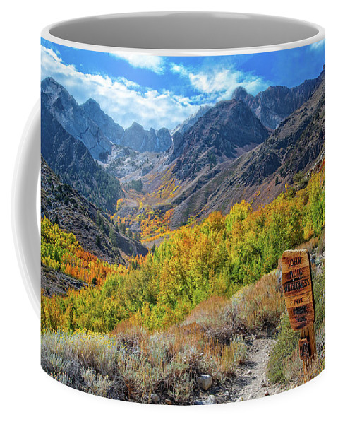 Fall Coffee Mug featuring the photograph Signs Of Grandeur by Lynn Bauer