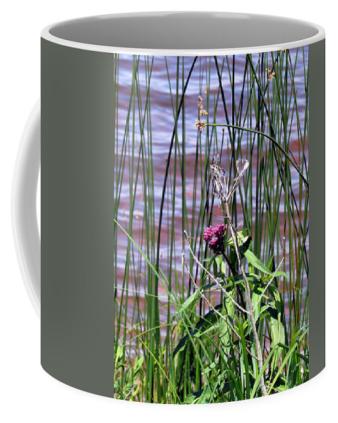Flower Coffee Mug featuring the photograph Silent Blessings by Sara Evans