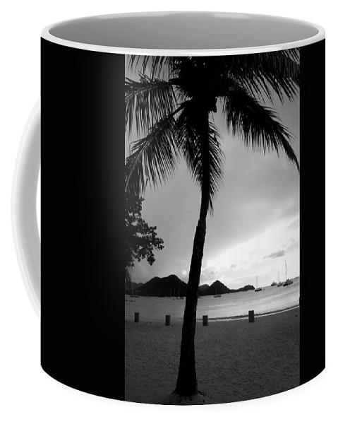 Palm Tree Coffee Mug featuring the photograph Silhouette by Angela Niesz