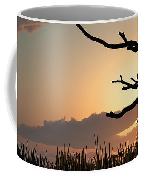 Trees Coffee Mug featuring the photograph Silhouette by Bob Orsillo