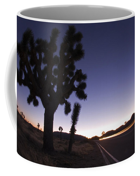 Joshua Trees Coffee Mug featuring the photograph Silhouette Of Joshua Trees Yucca by Rich Reid
