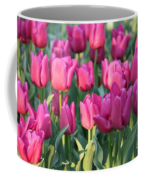 Pink Tulips Coffee Mug featuring the photograph Silky Pink Tulips by Carol Groenen