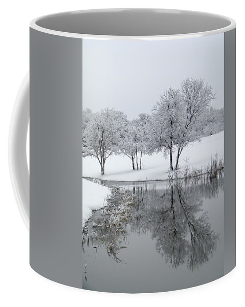Pond Coffee Mug featuring the photograph Silver Morn by Gale Cochran-Smith