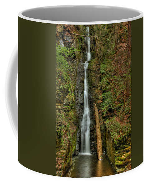Silver Thread Coffee Mug featuring the photograph Silver Thread by Evelina Kremsdorf