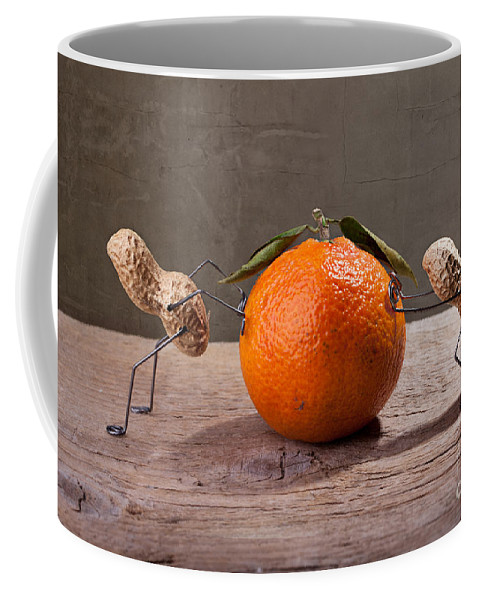 Peanut Coffee Mug featuring the photograph Simple Things - Antagonism by Nailia Schwarz