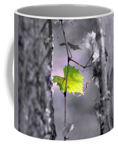 Tree Coffee Mug featuring the photograph Simplicity by Jennifer Diaz