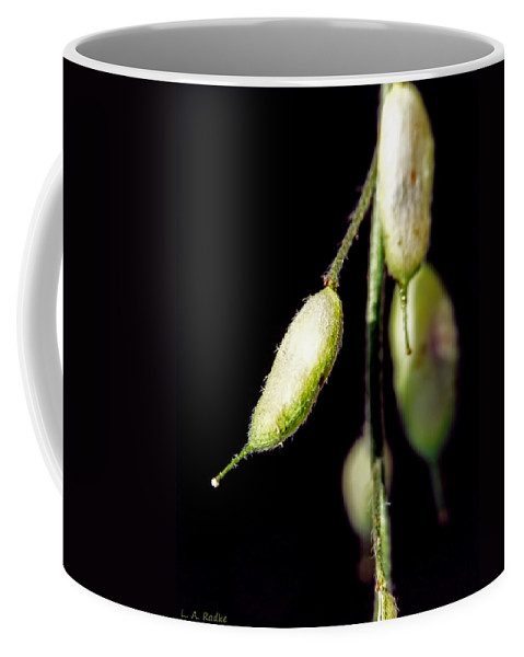 Abstract Coffee Mug featuring the photograph Simplicity by Lauren Radke