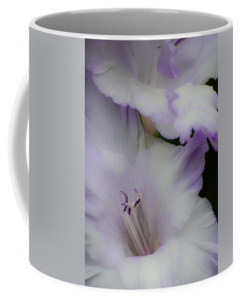 Flowers Coffee Mug featuring the photograph Simplicity by Stewart Helberg
