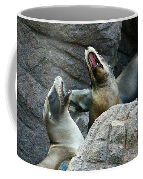 Sea Lions Coffee Mug featuring the photograph Singing Sea Lions by Anthony Jones
