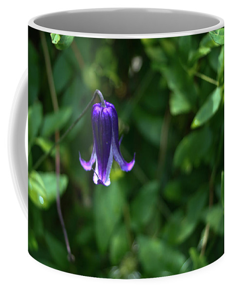 Single Coffee Mug featuring the photograph Single Clematis Bell Blossom by Douglas Barnett