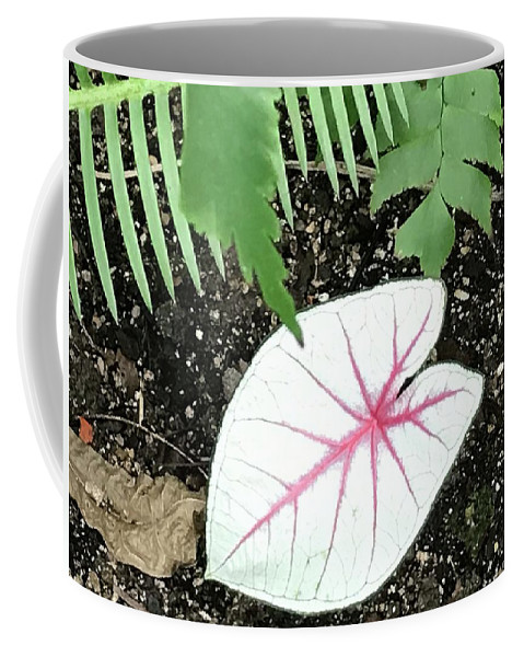 Flowers Coffee Mug featuring the photograph Single Leave by Jean Wolfrum