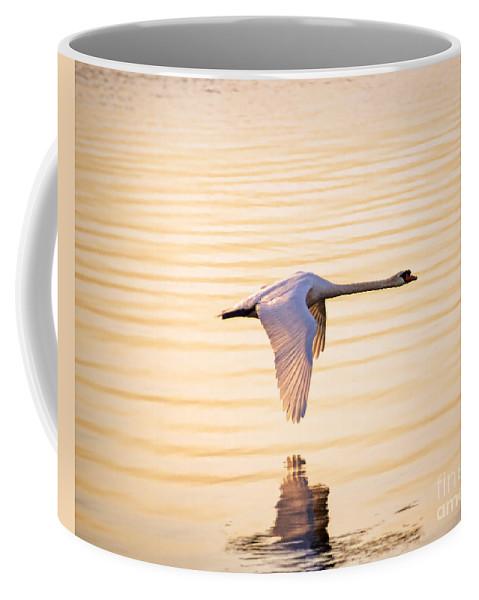 Altered Coffee Mug featuring the photograph Singular by Joe Geraci