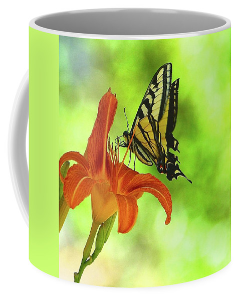 Butterfly Coffee Mug featuring the photograph sip by Cher Rydberg