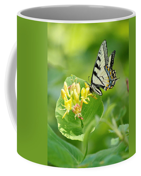 Nature Coffee Mug featuring the photograph Sipping Swallowtail by Crystal Massop