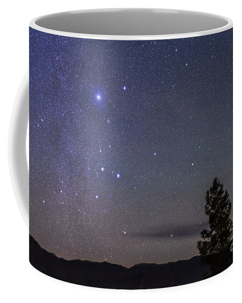 Canis Major Coffee Mug featuring the photograph Sirius & Canis Major Rising In New by Alan Dyer