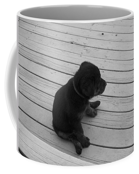 Puppy Dog Baby Relaxing Patience Black And White Photography Cute Coffee Mug featuring the photograph Sit And Think by Andrea Lawrence