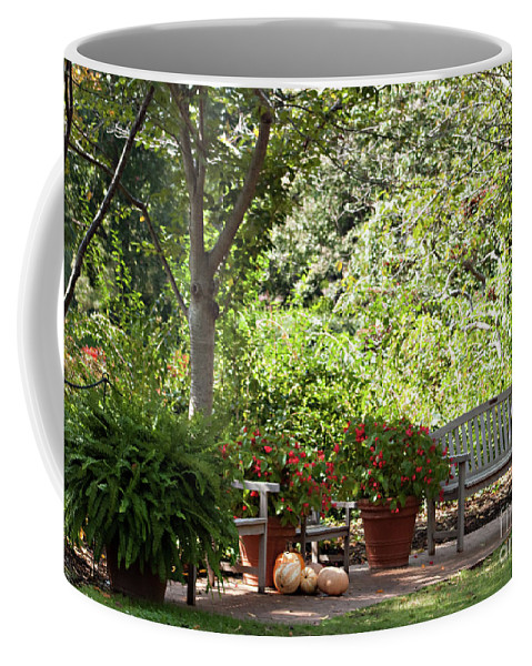 Sitting Coffee Mug featuring the photograph Sitting Along The Path by Sherry Hallemeier