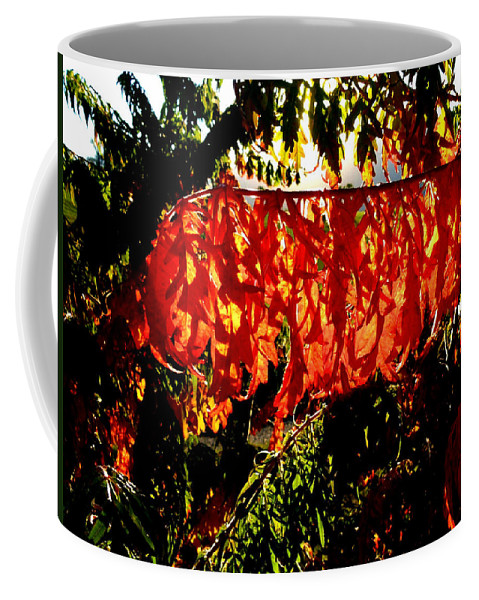 Sumac Coffee Mug featuring the photograph Sizzling Sumac by Will Borden
