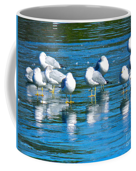 Seagulls Coffee Mug featuring the photograph Skating Party by E Robert Dee