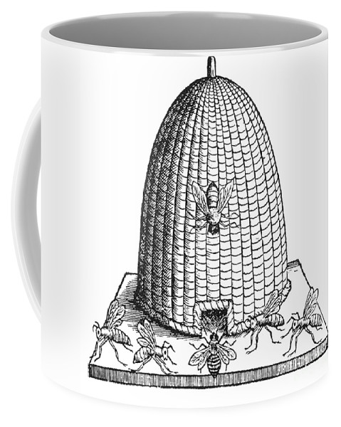 Agriculture Coffee Mug featuring the photograph Skep Beehive, 17th Century by Science Source