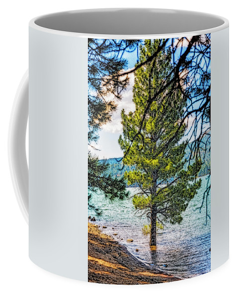 Tree Coffee Mug featuring the photograph   Skin Deep by Nancy Marie Ricketts