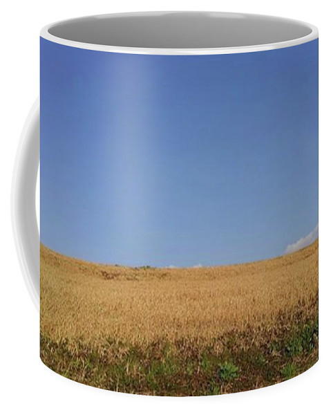Sunnyday Coffee Mug featuring the photograph Sunnyday by Kumiko Izumi